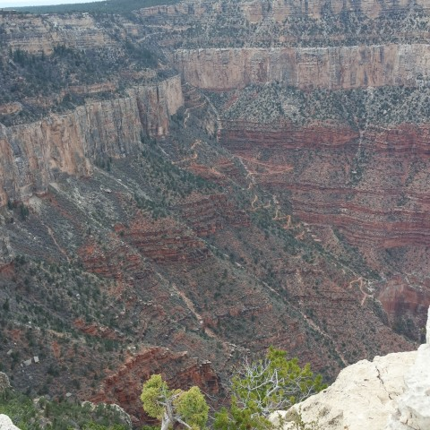 Grand-Canyon-trail-you-take-to-the-bottom-of-the-Canyon